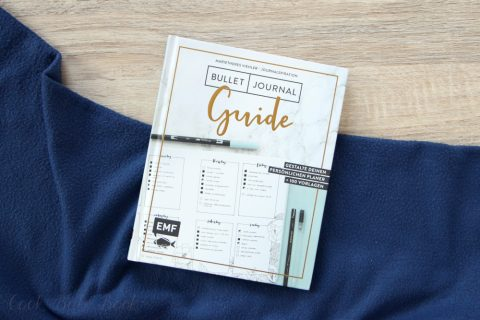 Journalspiration - Bullet-Journal-Guide von Marietheres Viehler